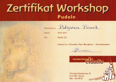 Pudel Workshop